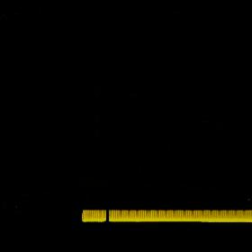 Gainward GTX1650 4GB Pegasus DVI / HDMI DDR5 u prodaji 4467